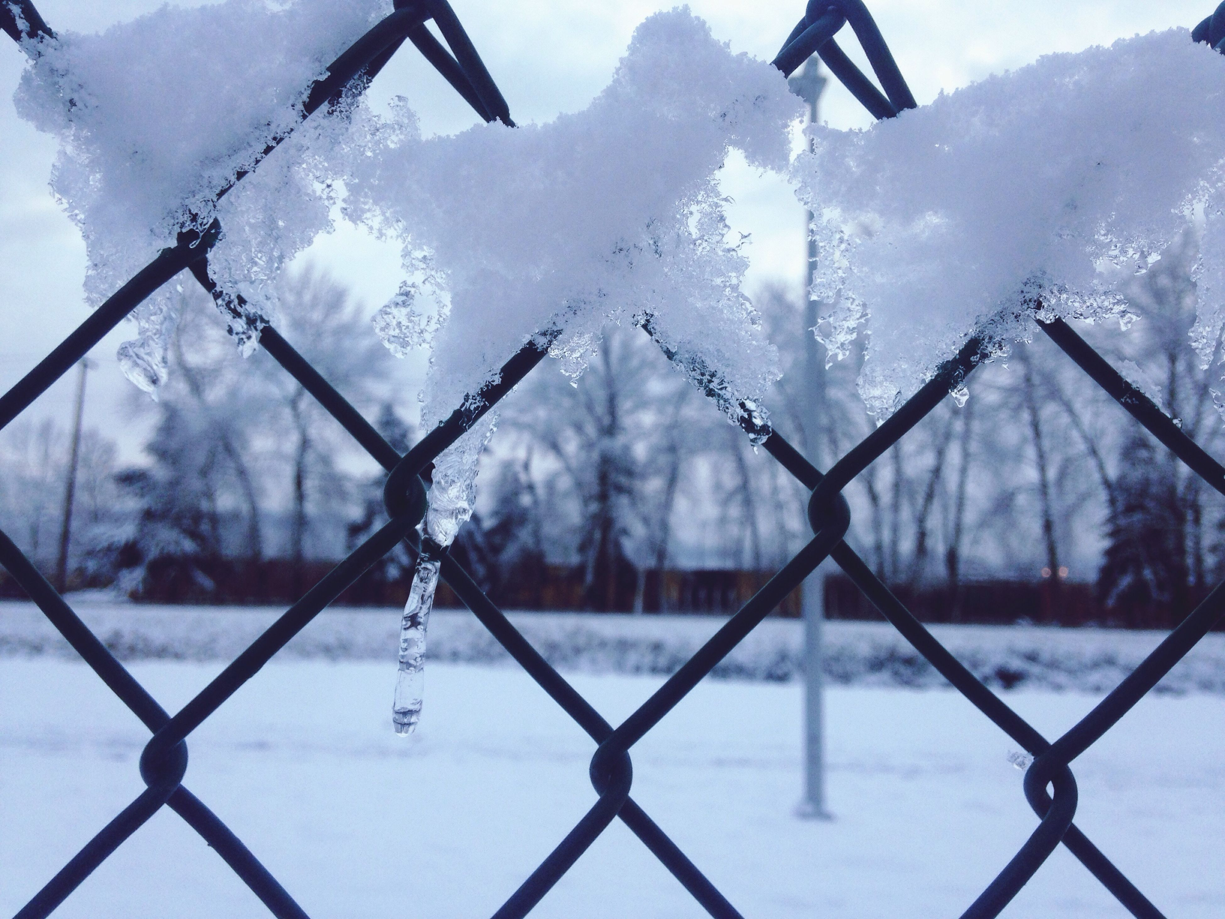 Focus Point Icecicles With Snow On Fence Close Up Winter