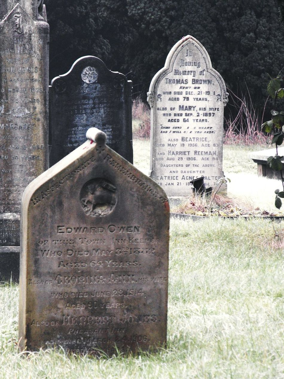 ... an Old Cemetery ... Graveyard Gravestones Cemetery Grave Victorian Wales Yew Tree Grass Cold Stone Carvings Letters Inscriptions Newtown Powys History Past Britain Uk Day Outdoors кладбище могилы надгробия Growth