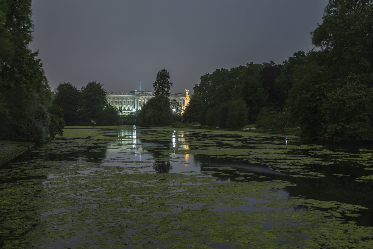 Buckingham Palace at night from St. James' Park, Westminster, London, England, United Kingdom Beauty In Nature Buckingham Palace Building Day England Grass Growth Lake London Nature Night No People Outdoors Palace Reflection Scenics Sky St James' Park Tranquil Scene Tranquility Tree United Kingdom Water Waterfront Westminster