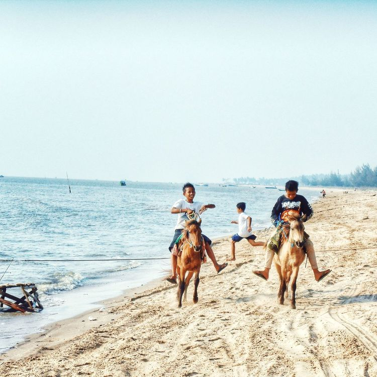 The Moment - 2015 EyeEm Awards Beach Horses Children Moments Happiness EyeEm Indonesia Discover Indonesia Explore Indonesia Play With My Sight