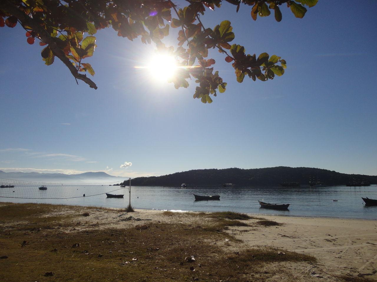 Arvores... 🌿❤ Barcos Barcos_beach_br Beach Brasil CeuAzul CeuPerfeito Céu Ilha Ilha De Porto Belo Marazul Marebaixa Mars Mundo NaturezaMaravilhosa Nuvens Ao Vento Nuvensbrancas Rede Sea Sol Sunlight Tarde  Tranquility Volei Water