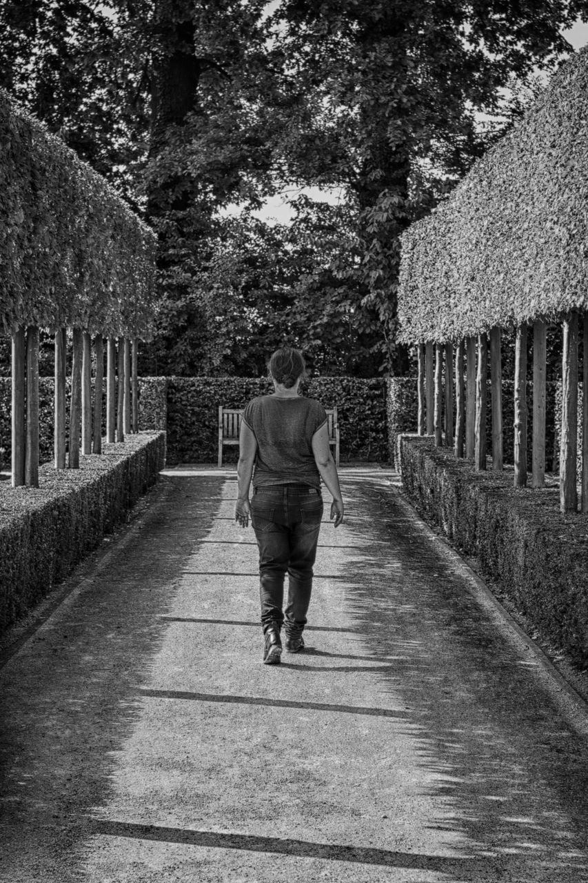 rear view, walking, full length, one person, tree, real people, the way forward, men, day, outdoors, lifestyles, women, growth, nature, architecture, adult, people