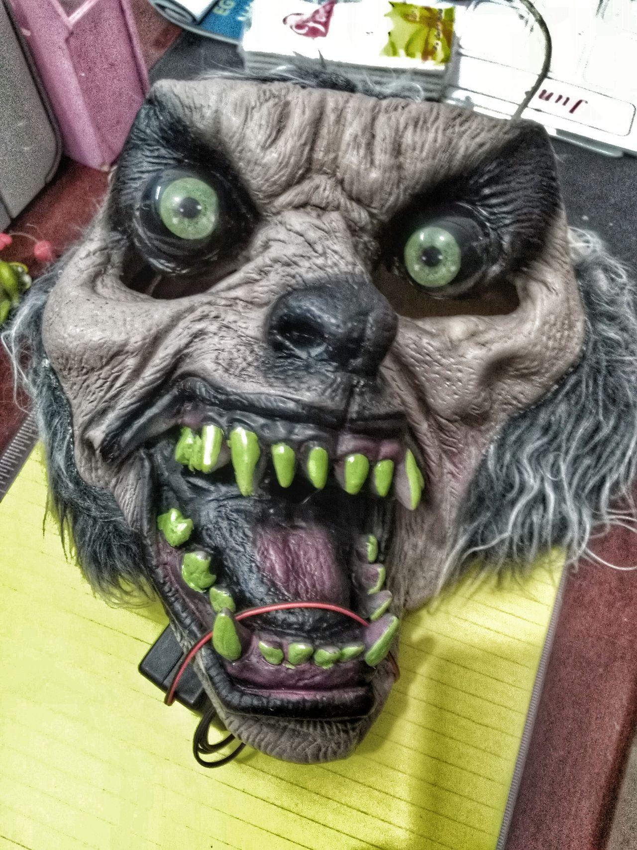 Horror Horror Faces Horrorlover