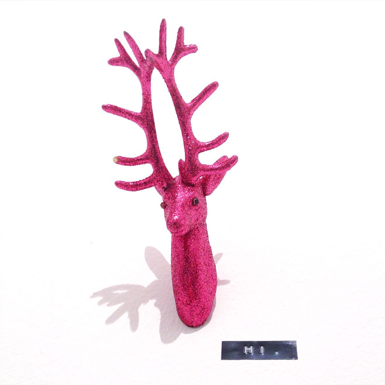 Pink Antlers Mounted On Wall At Home