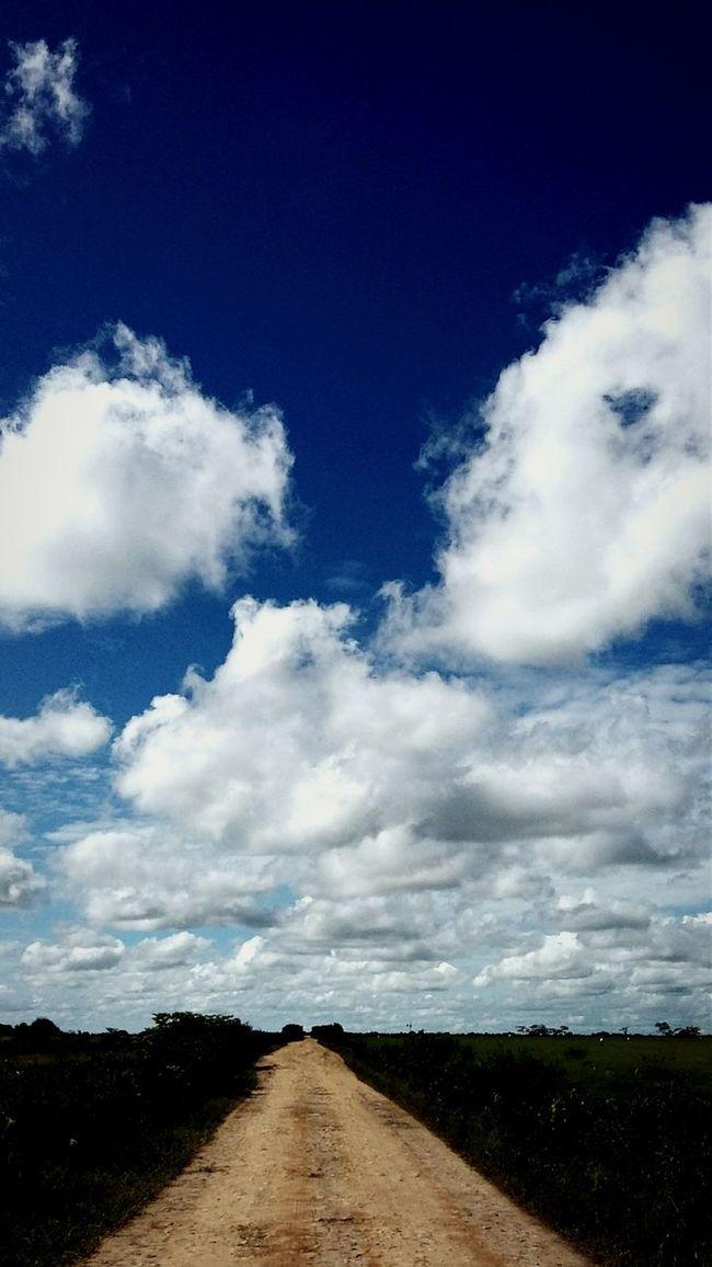Cielo Arboles , Naturaleza Cielo Y Nubes  Naturaleza Llanosorientales Paisaje Cielo Y Sol Calor!!!