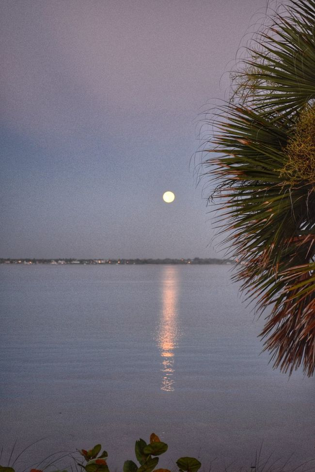 Moonset Tranquil Scene Full Moon Horizon Over Water Moon Reflected In Water Indian River Lagoon
