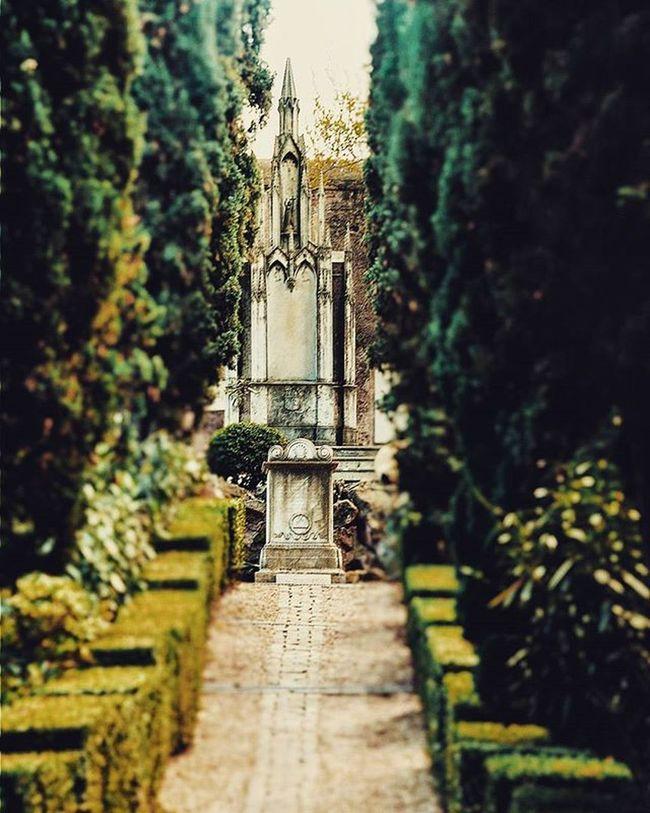 C'è un cuore che batte nel cuore di Roma* Roma Rome Piramide Testaccio  Cimitero Acattolico Cemetery English Cemetery Of Rome Cimiteroacattolico English Cemetery