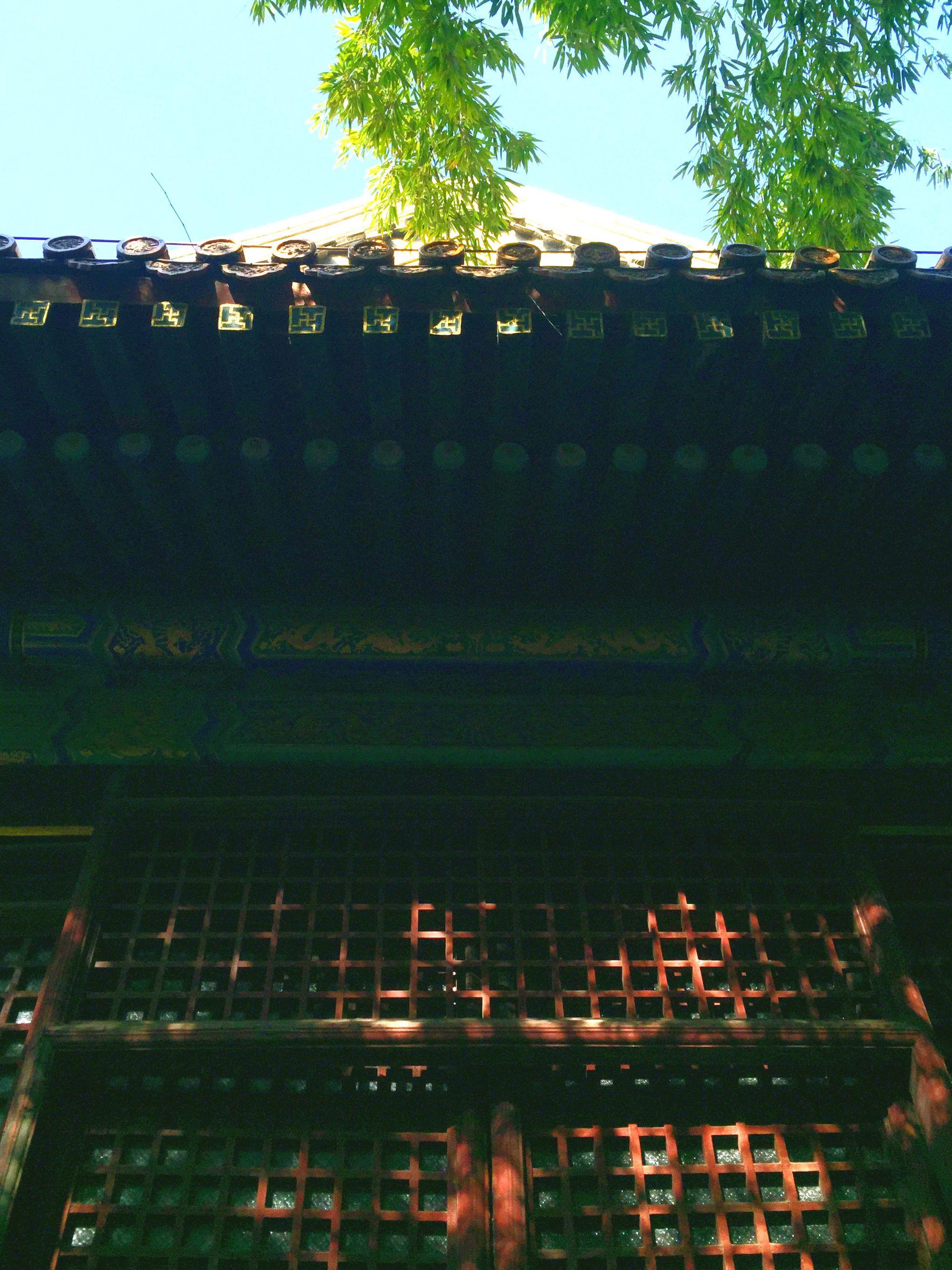 Buddah Temple Spring Light And Shadow
