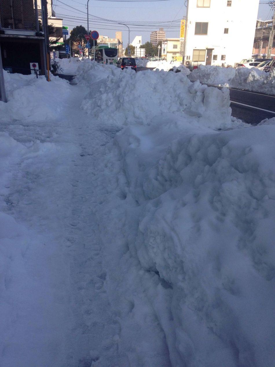 February 16th Morning Sidewalk