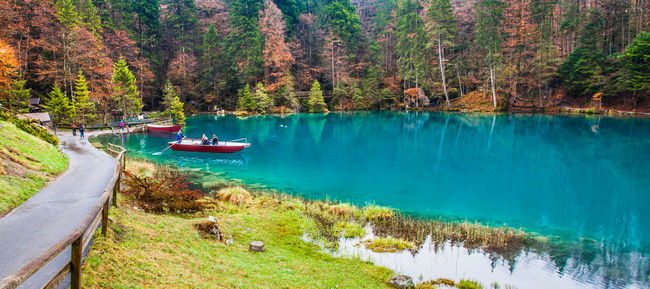 The beautiful Blausee, Switzerland Beautiful Blausee Blue Clear Crystal Clear Waters Destination Lake Nature Park Peaceful Swiss Switzerland Tourism Tourist Attraction  Tranquility Traveling Trees Turquoise