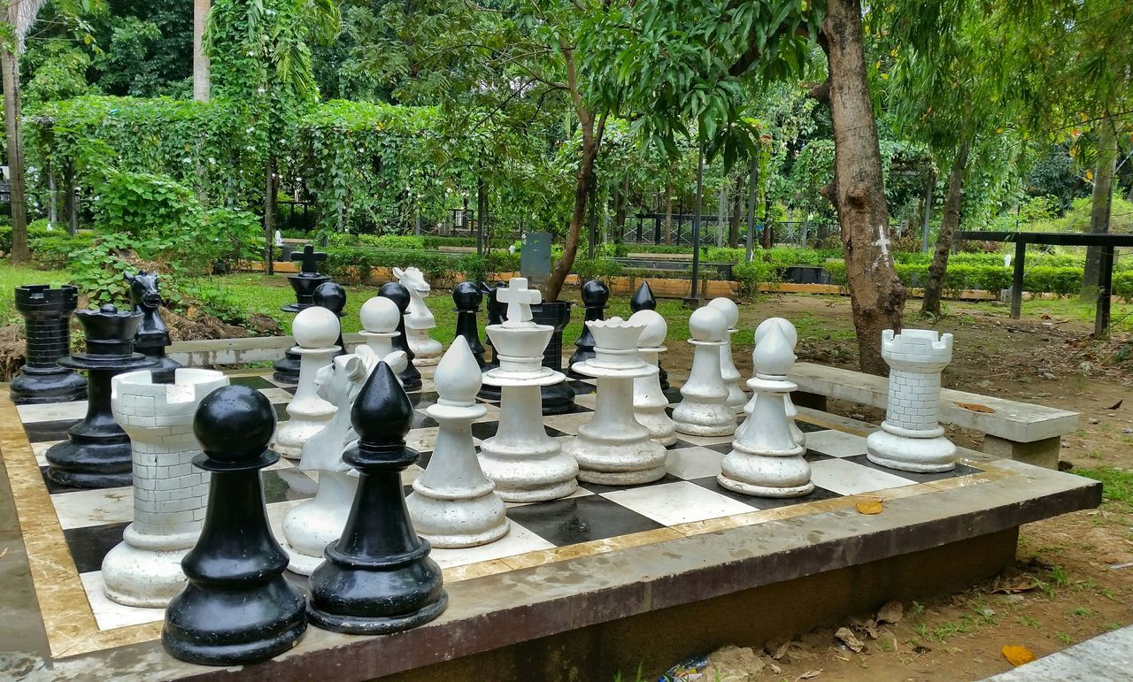 Close-Up Of Chess Pieces Against Trees