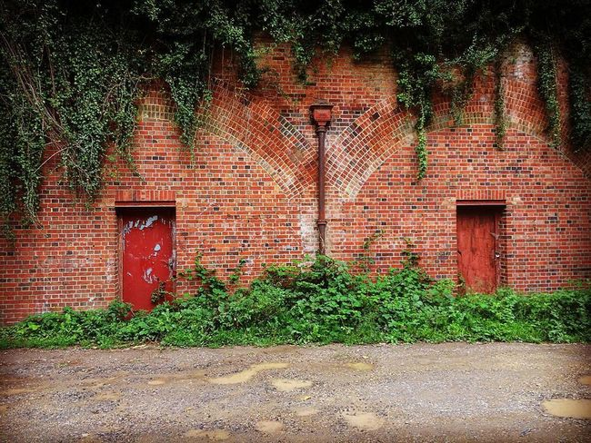 Ancient Monument Architecture Brick Wall Built Structure Close-up Closed Day Defensive Structure Doorway Doorways Exterior Façade Fortifications Green Color Growth Hilsea Lines Hilsea Lines Ramparts Ivy Nature No People Outdoors Plant Portsea Ramparts Red