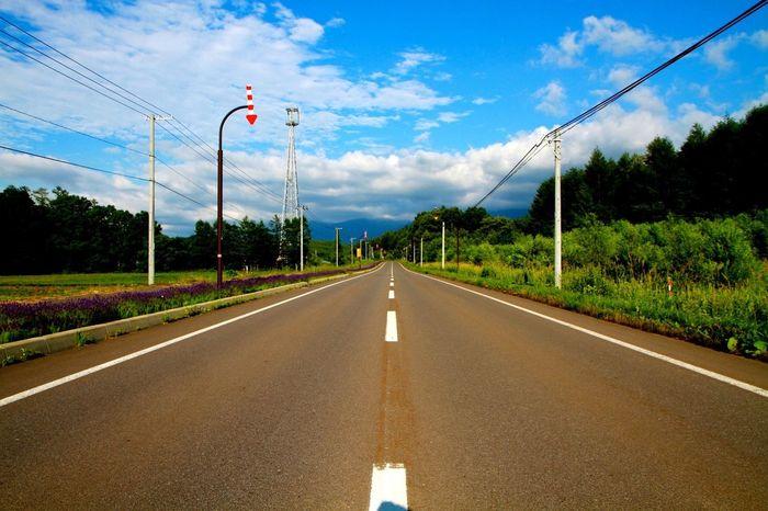 Hokkaido Biei Sweet Memory