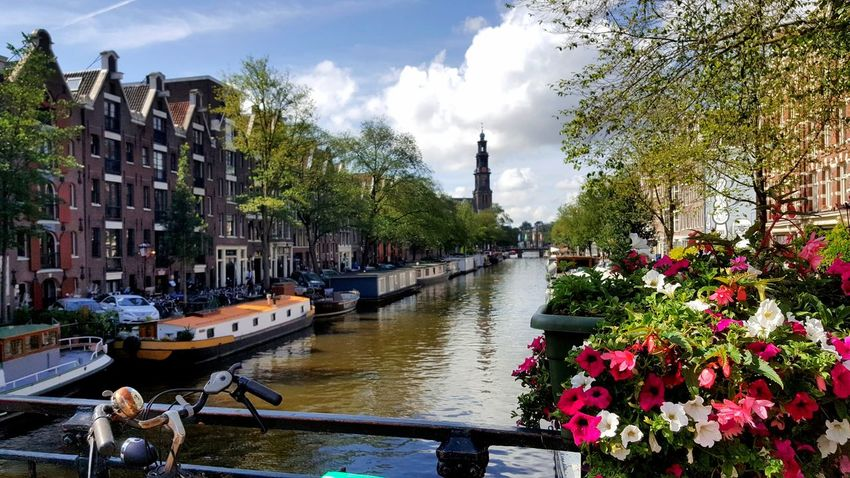 See The World Travel No People See The World Through My Eyes Take A Walk Amsterdamcity Holland Amsterdam Flowers Streetphotography Street Netherlands Church Architecture Bulidings Buliding Grachtengordel Amsterdam Canal Amsterdamse Grachten Amsterdam City Amsterdam Streets Amsterdamcanal Trees Blue Sky Beauty View Boathouses