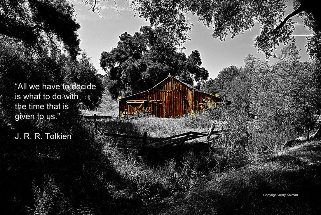 #JRRTolkien comments over a scene at #DaleyRanch in nearby #Escondido. If this #quotograph resonates with you feel free to #repost for others to enjoy Close-up Daley Es J R R Tol J R R Tolkein Park Q Quotography