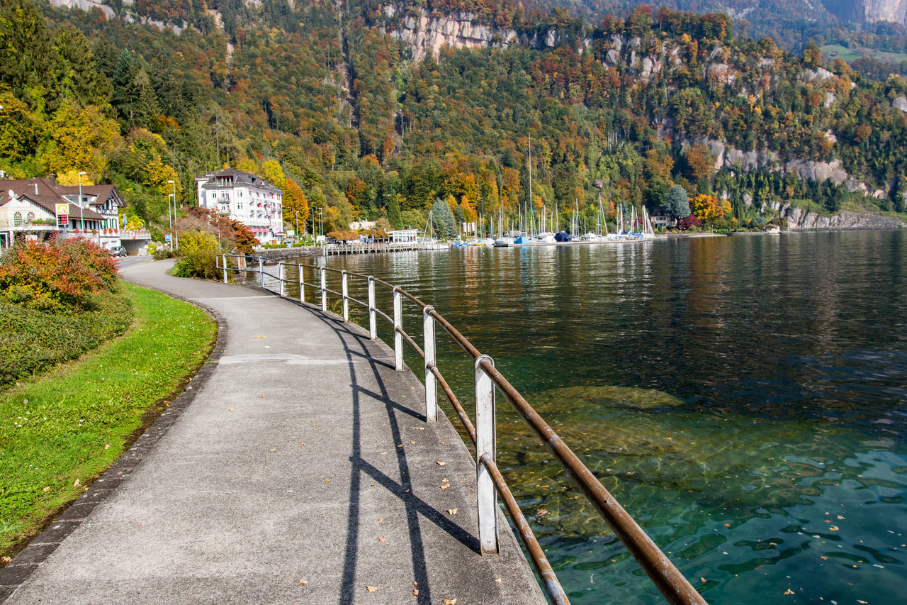 Lakeside view with walkway. Autumn Beauty In Nature Fence Lake View Nature Outdoors Tree Walkway Water