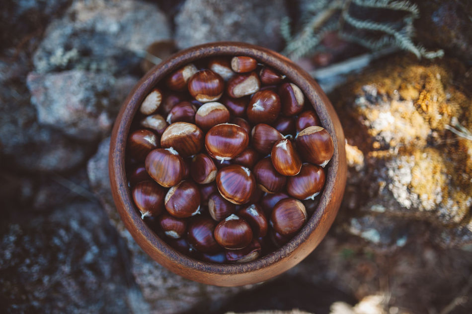 Autumn Autumn Colors Brown Chestnut Chestnut Chestnut - Food Chestnut Tree Chestnuts Close-up Day Food Food And Drink Freshness Indoors  No People Pot
