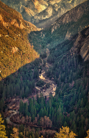 Yosemite valley Yosemite National Park Yosemite California United States Nature Agriculture Full Frame Scenics High Angle View Growth Outdoors Tree Beauty In Nature Landscape Tranquility Field Tranquil Scene No People Day Aerial View Rural Scene Backgrounds Sky
