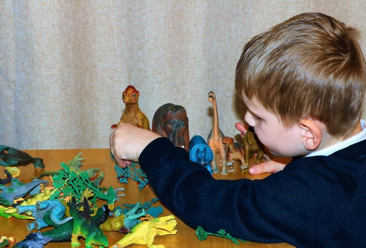 Playing with Dinosaurs Dinosaurs Fun Learning Boys Child Playing With Toys Childhood Close-up Concentrating Creative Day Educational Enjoyment Holding Toys Human Hand Indoors  Lifestyles One Person People Plastic Toys Playing Quietly Quiet Time Real People Role Playing Game