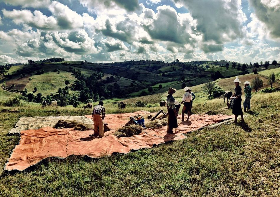 Flashback 2014 Myanmar trip Myanmar Myanmarphotos Trekking Kalaw To Inle Lake Rural Scenes Farmer EyeEm Best Shots Mybestphoto2014 People And Places Amazing View Beautiful Nature Countryside Burma Skyporn Sky And Clouds People Together IPhoneography Enjoying The View Beautiful Myanmar TrekkingDay Clouds Shades Green Hills Landscapes With WhiteWall Like A Painting Harvest