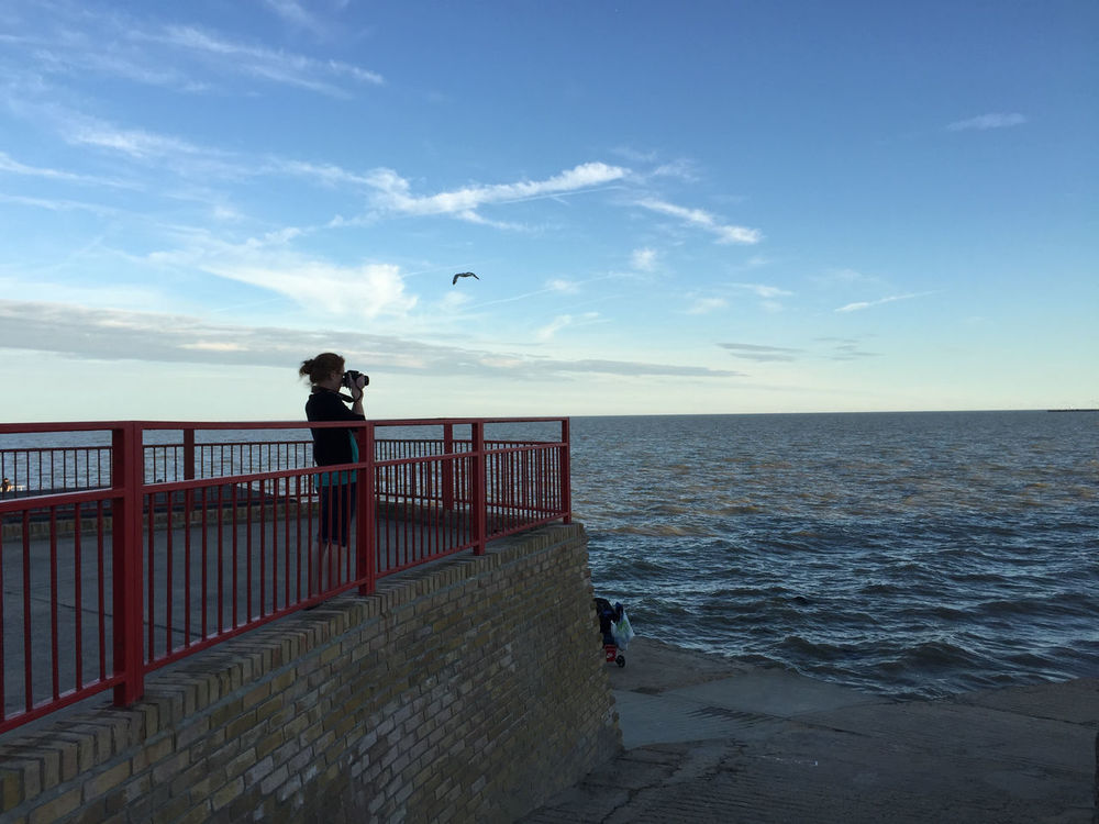 A walk in Walton. Beauty In Nature Bird Blue Flying Horizon Over Water Pier Railing Scenics Sea Shore Sky Standing Tranquil Scene Tranquility Water