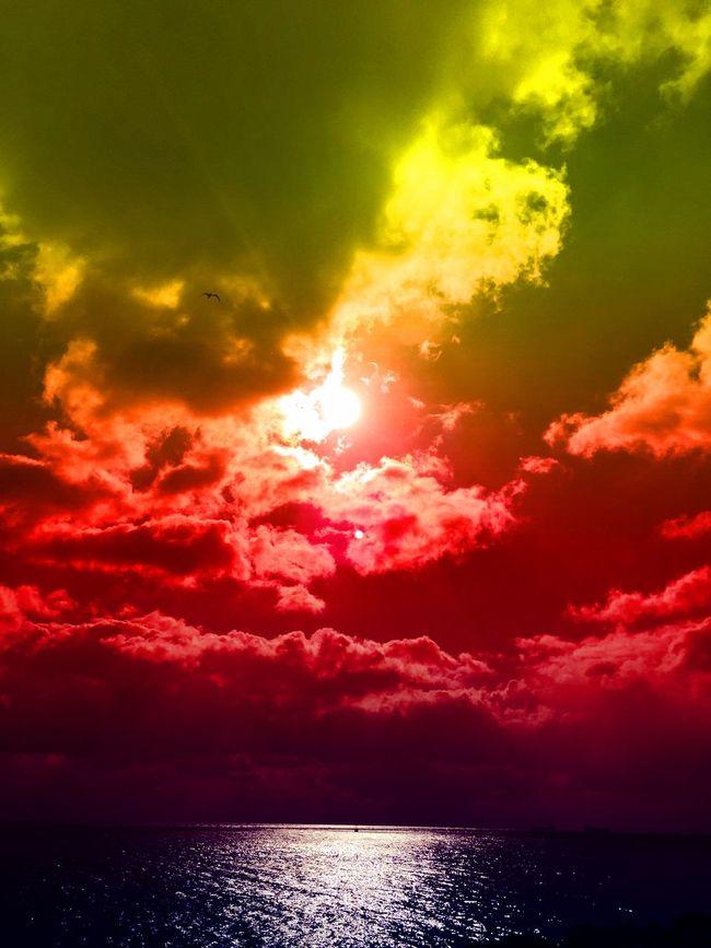 Hello World Enjoying Life Sunset #sun #clouds #skylovers #skyporn #sky #beautiful #sunset #clouds And Sky #beach #sun _collection #sunst And Clouds Relaxing Photowork Skyporn Istanbul Yesilköy Photography EyeEmBestPics Beatiful Artistic Colors Eyerm Art, Drawing, Creativity Love Seaside Sunrise