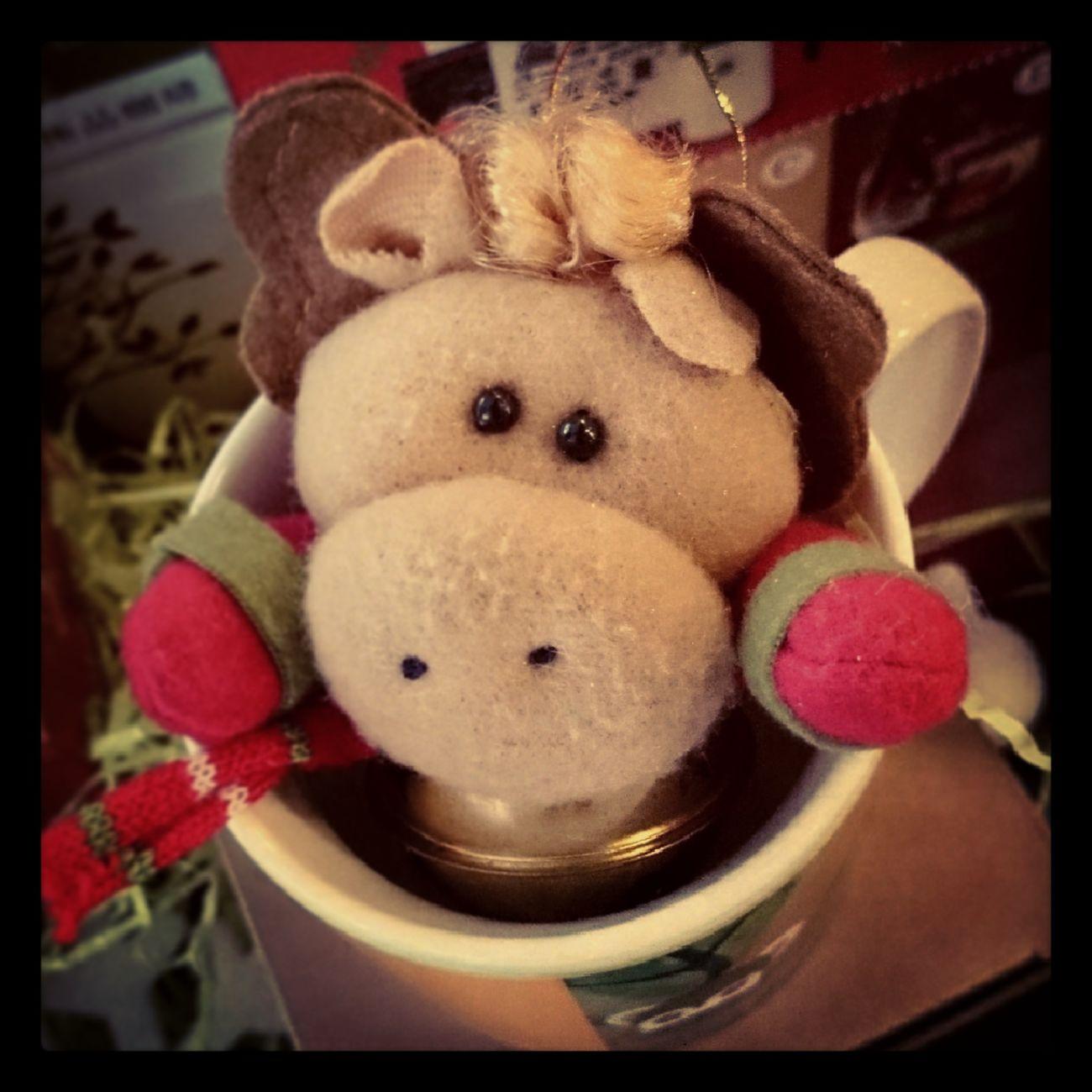 杯子裡的小糜鹿
