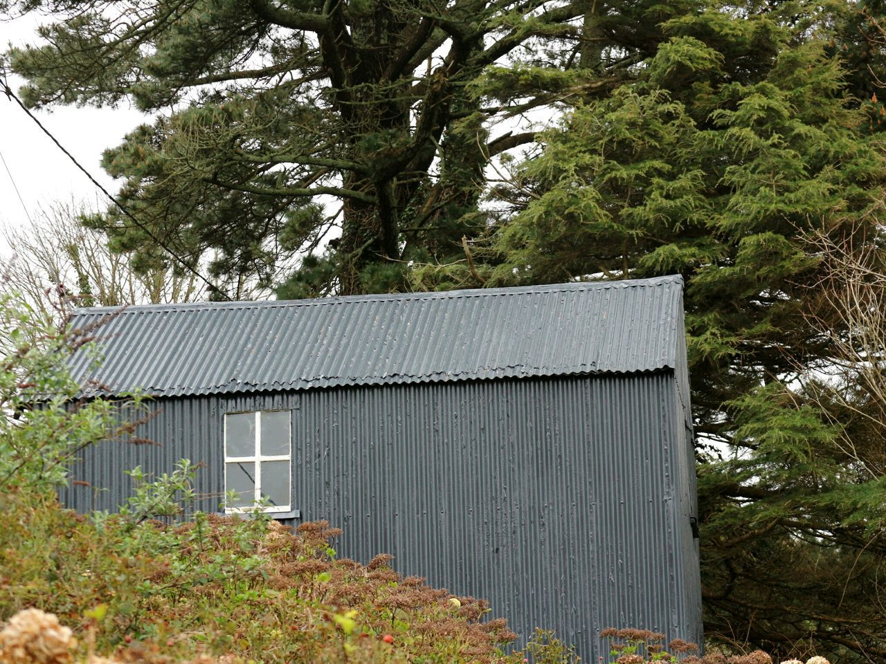 Tin shed Shed Corrugated Iron Grey Color Grey Sky Pine Tree No People Day Outdoors Glandore, Ireland West Cork Wildatlanticway Ireland
