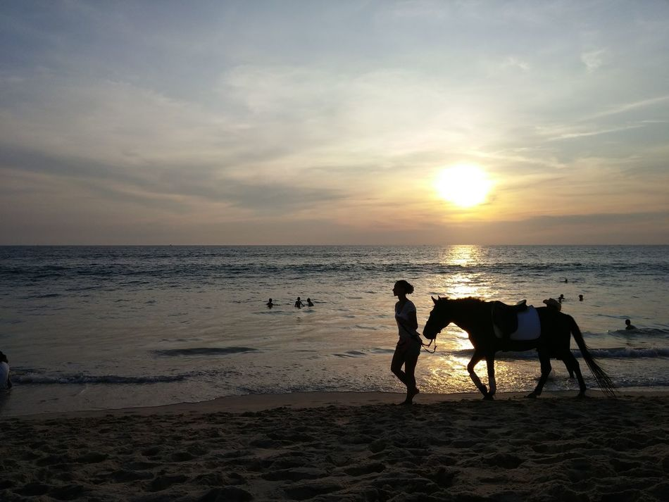 Relaxing Taking Photos Enjoying Life Romantictime Sunset Withfamily Hourse With Beautiful Lady And Landscape Photoby LGG3