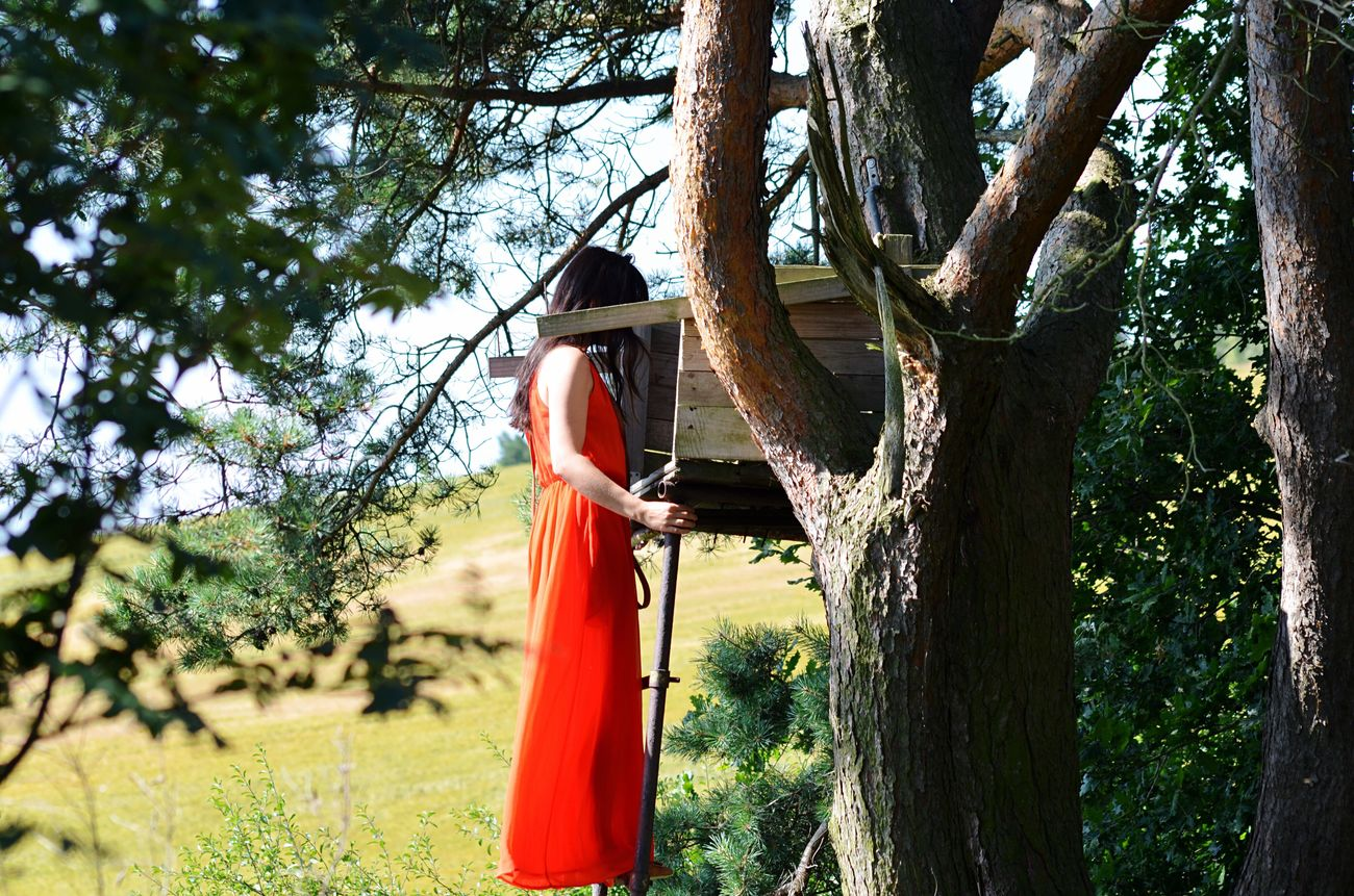 Tree Outdoors Nature Red Dress Nature Relaxation Be One With The Nature