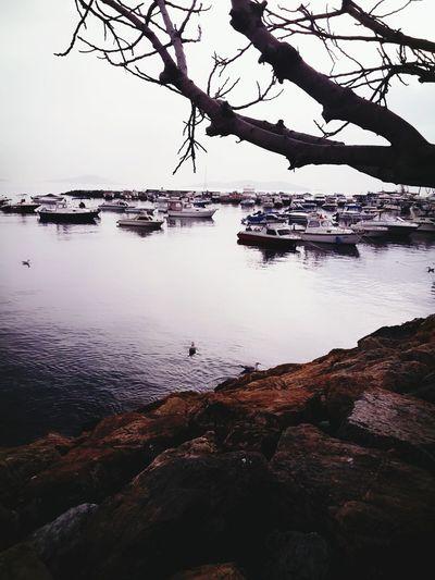 Deniz Bostancı Sahili