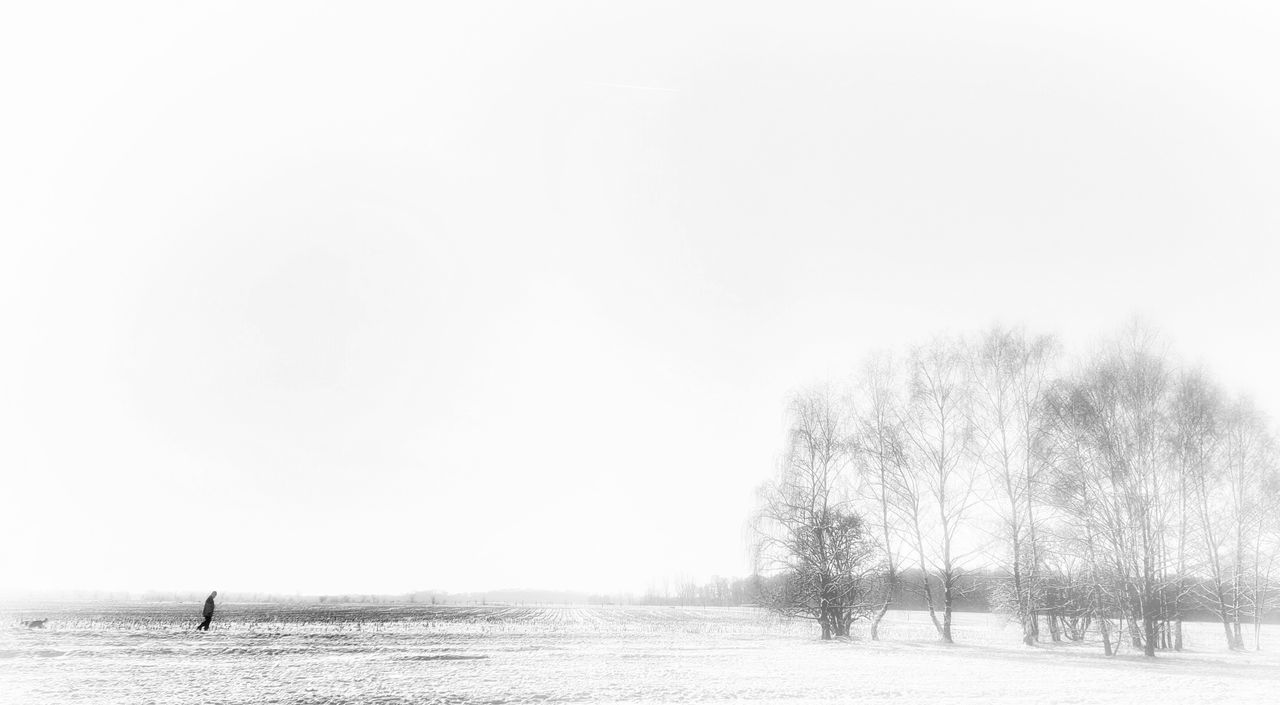 AntiM Beauty In Nature Blackandwhite Day Melancholic Landscapes Nature No People One Person Outdoors Person And Dog Scenics Sky Tree Water Winter Blues Winter Solitude