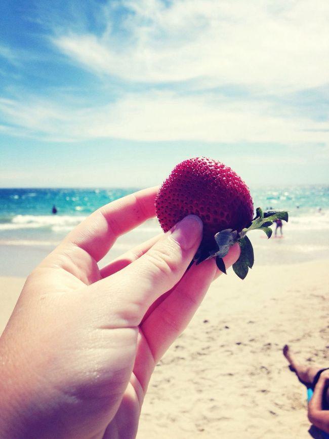 Summer Vacation Traveling