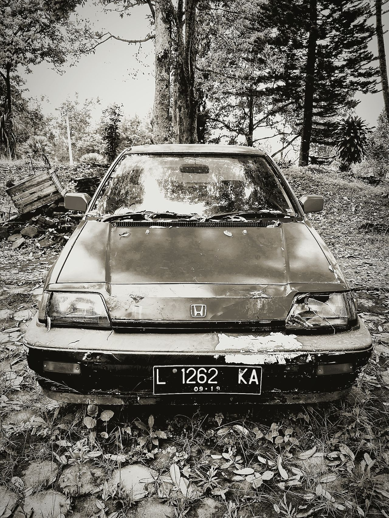 Old school Car Transportation Old-fashioned Outdoors Portrait Indonesian Photography Nature Pupular Photos  My Year My View Photographic Memory Black And White Collection  Blackandwhitephotography Black And White Portrait Vintage Vintage Cars Vintage Photo Oldschool Old Car Indonesian Photographers Collection