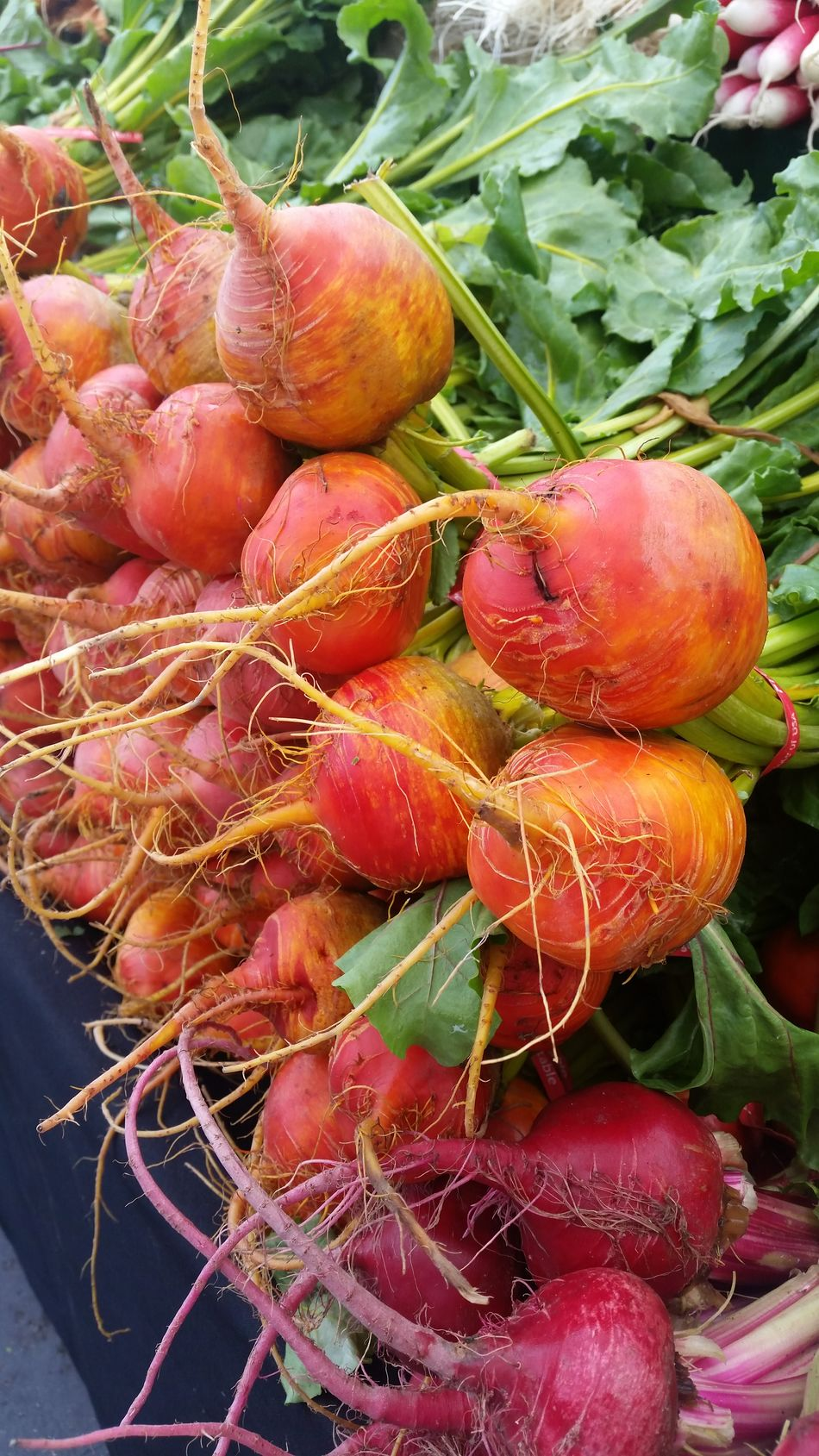Beautiful creations from our earths soils Beets Farmers Market Earths Gifts Soil Beautiful Color Organic Natural