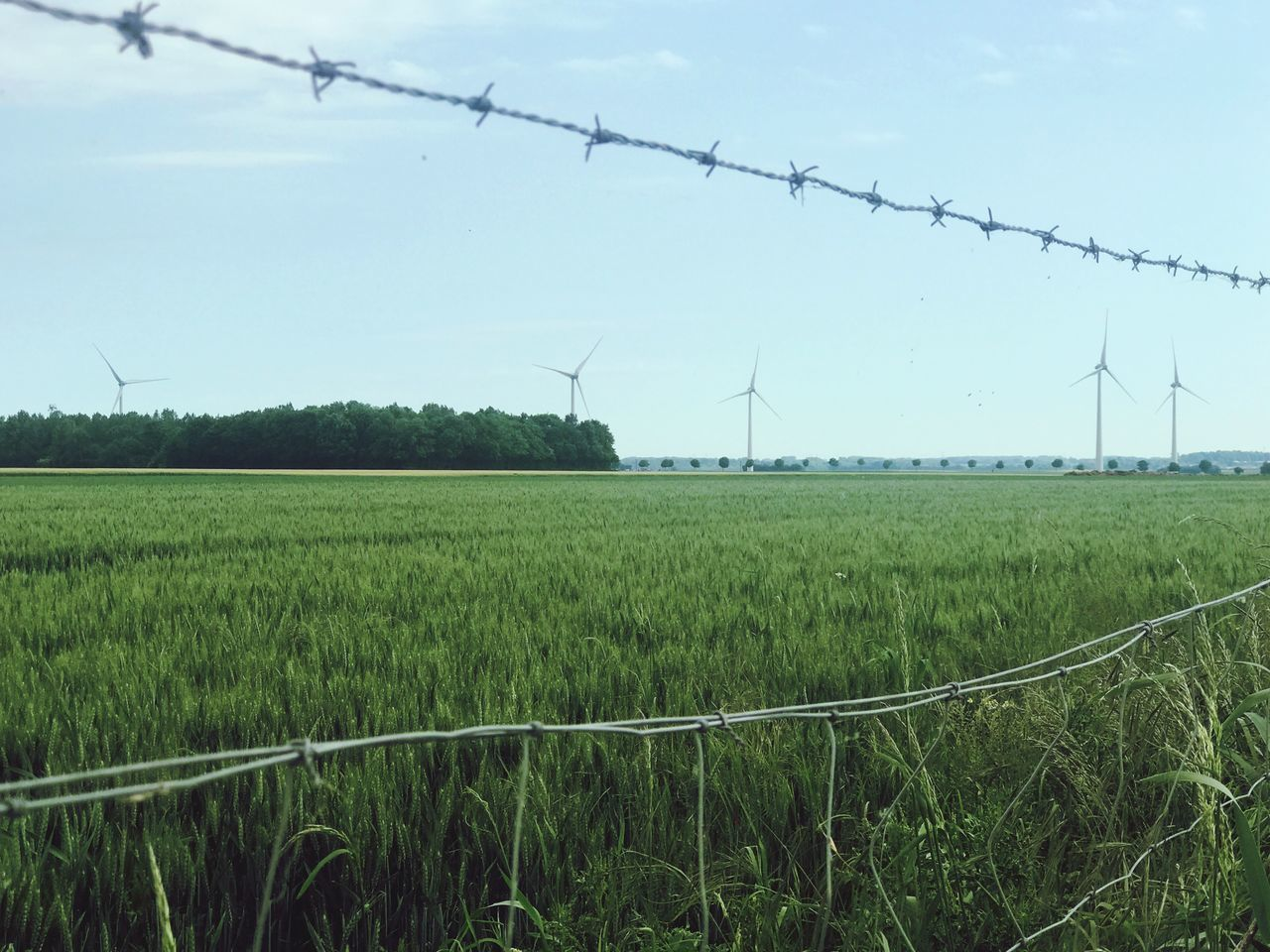 Fuel And Power Generation Field Alternative Energy Day Renewable Energy No People Outdoors Wind Turbine Wind Power Rural Scene Nature Sky Grass Power Supply Cable Windmill Landscape Electricity  Electricity Pylon Growth Windmills Windmill France
