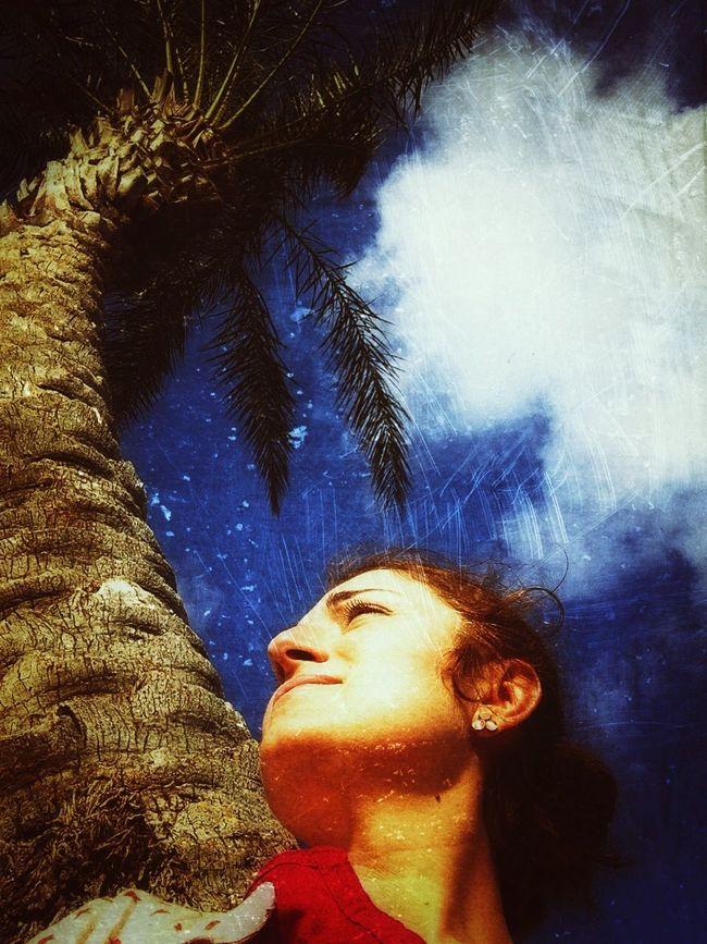 Tree Sky Spring Calm Düdenpark Antalya