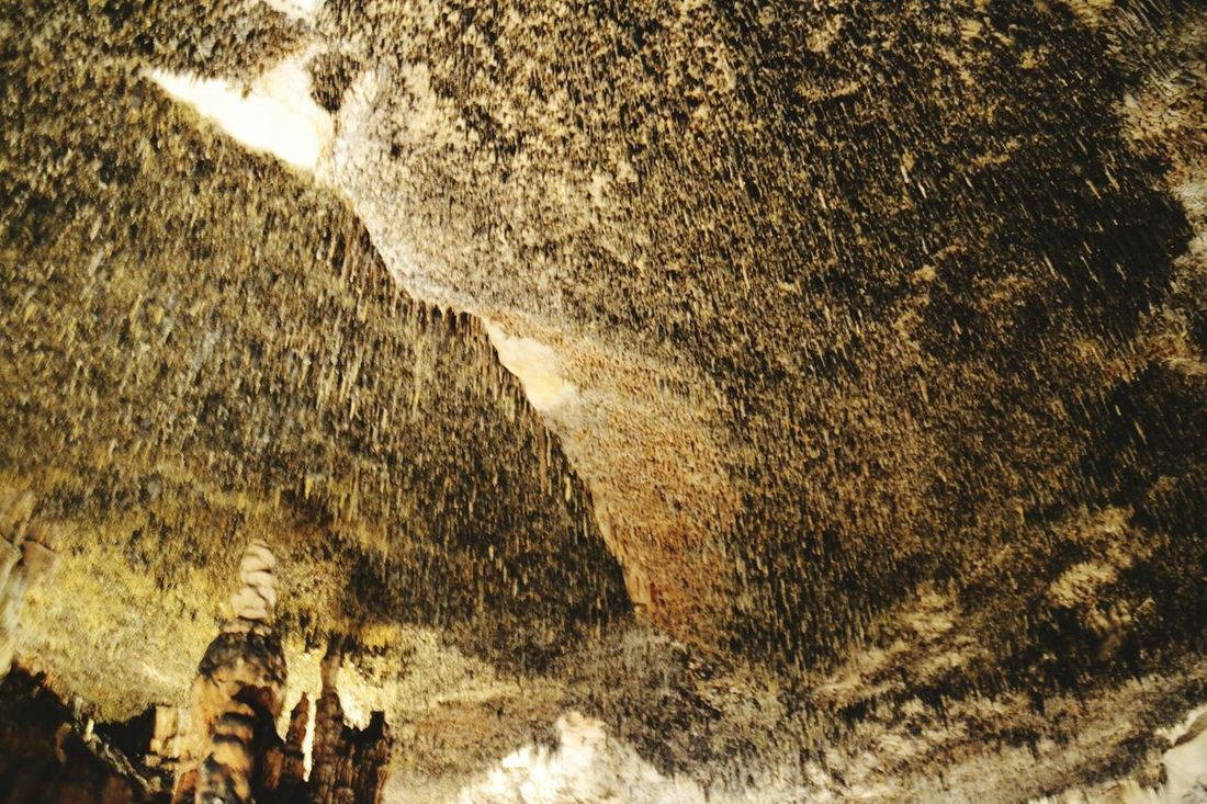 Caves Drach Caves Drach's Caves Mallorca Caves Of Drach Nature Beauty In Nature