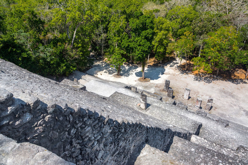 Stairs leading down structure two in Calakmul, Mexico Architecture Calakmul Central America Mayan Mayan Ruins Mexico Pyramid Ruins Travel Biosphere Calakmul Biosphere Reserve Day Forest Jungle Nature No People Outdoors Rain Forest Rainforest Reserve Stone Temple Tourism Travel Destinations