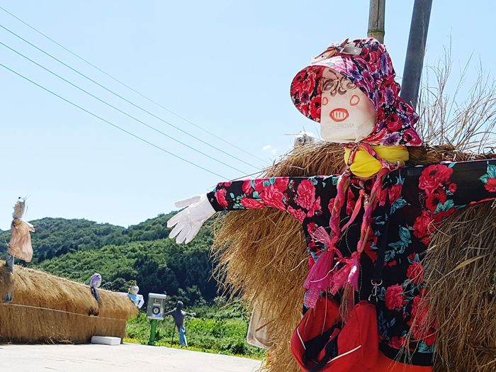 Sky Landscape Countryside Country Life Rice Field Rice Paddy Scarecrow Scarecrows Scarecrow_contest