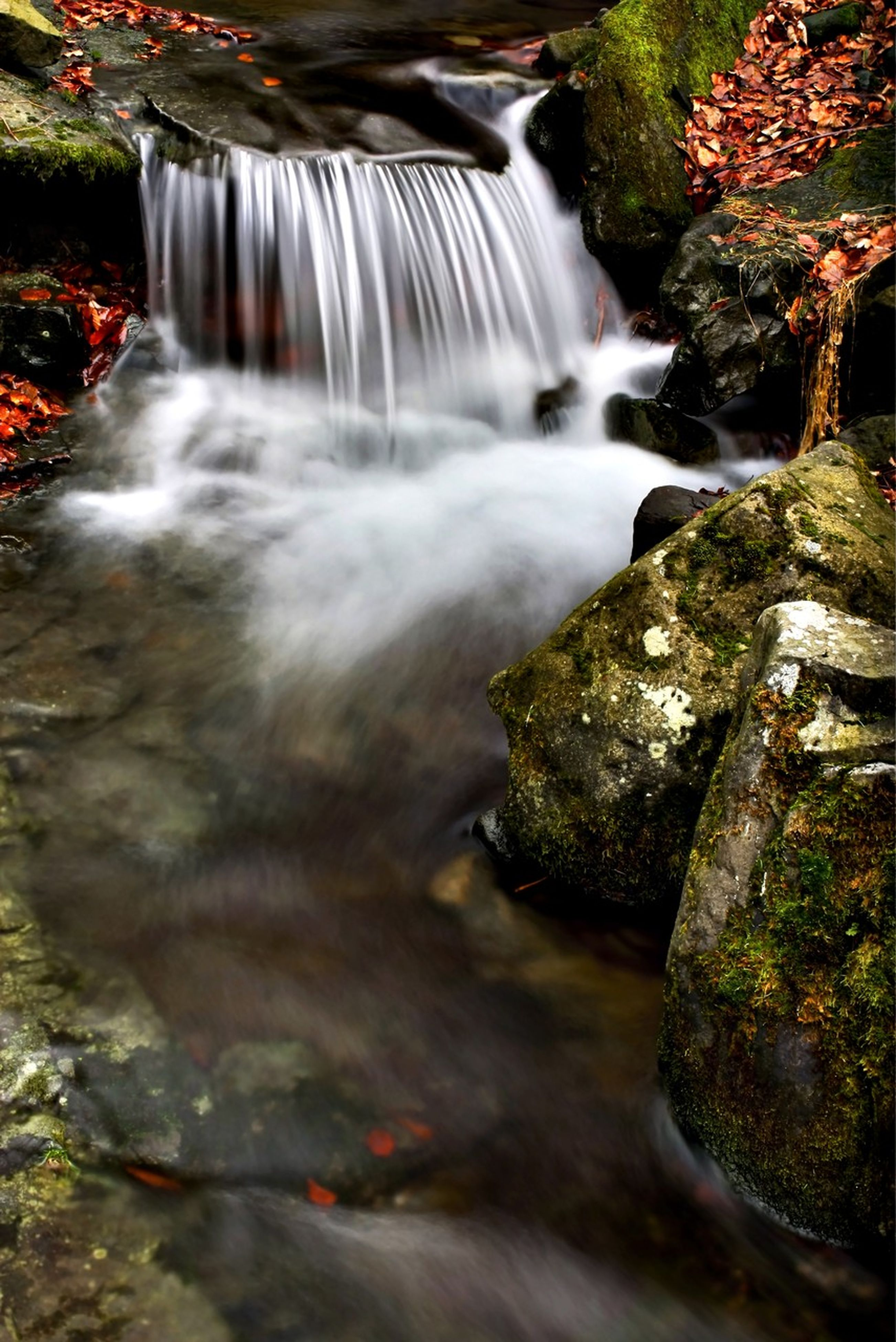 waterfall, flowing water, motion, long exposure, water, flowing, rock - object, beauty in nature, forest, blurred motion, scenics, nature, stream, power in nature, rock, environment, idyllic, rock formation, splashing, outdoors