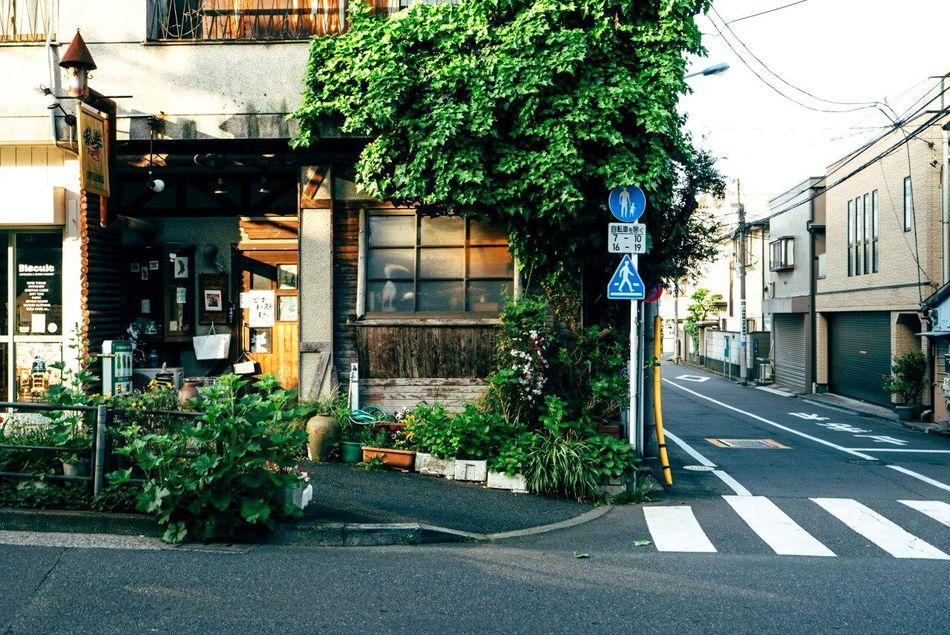 Japan Tokyo Tokyo, Japan Streetphotography ストリート 日本 東急 ボーズ 東急ストリート