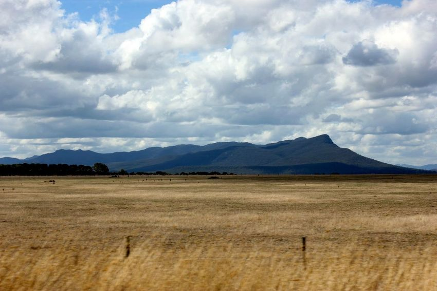 Landscape Mountains And Sky EyeEm Best Shots EyeEm Nature Lover EyeEmBestPics EyeEm Best Shots - Nature Nature Taking Photos Picoftheday Australian Outback