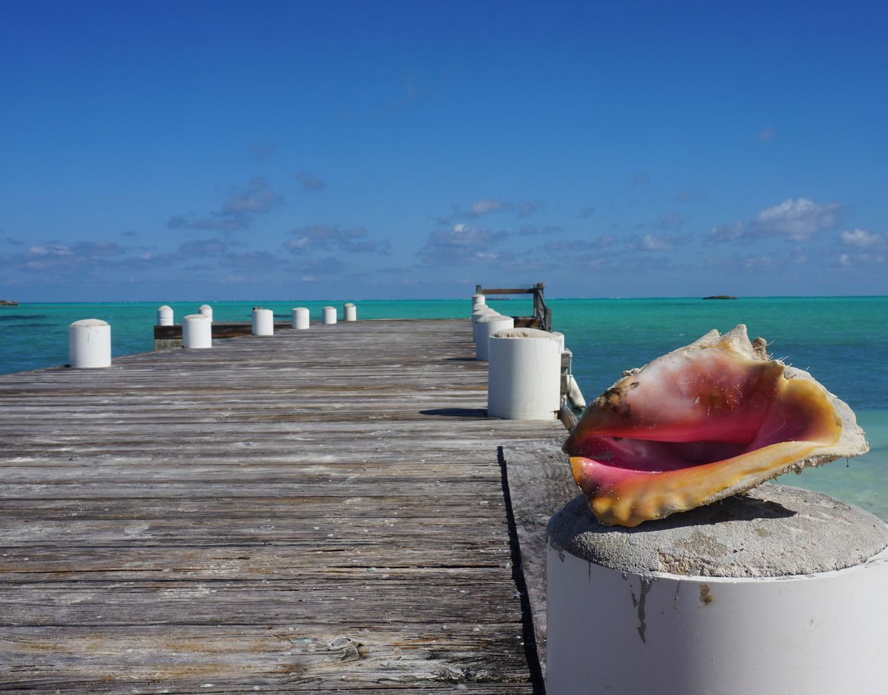 Unfiltered Turks And Caicos Turks And Caicos Islands Sea Horizon Over Water Blue Day Sky No People Nature Water Outdoors Conch Island Dock Lovethesea EyeEmNewHere