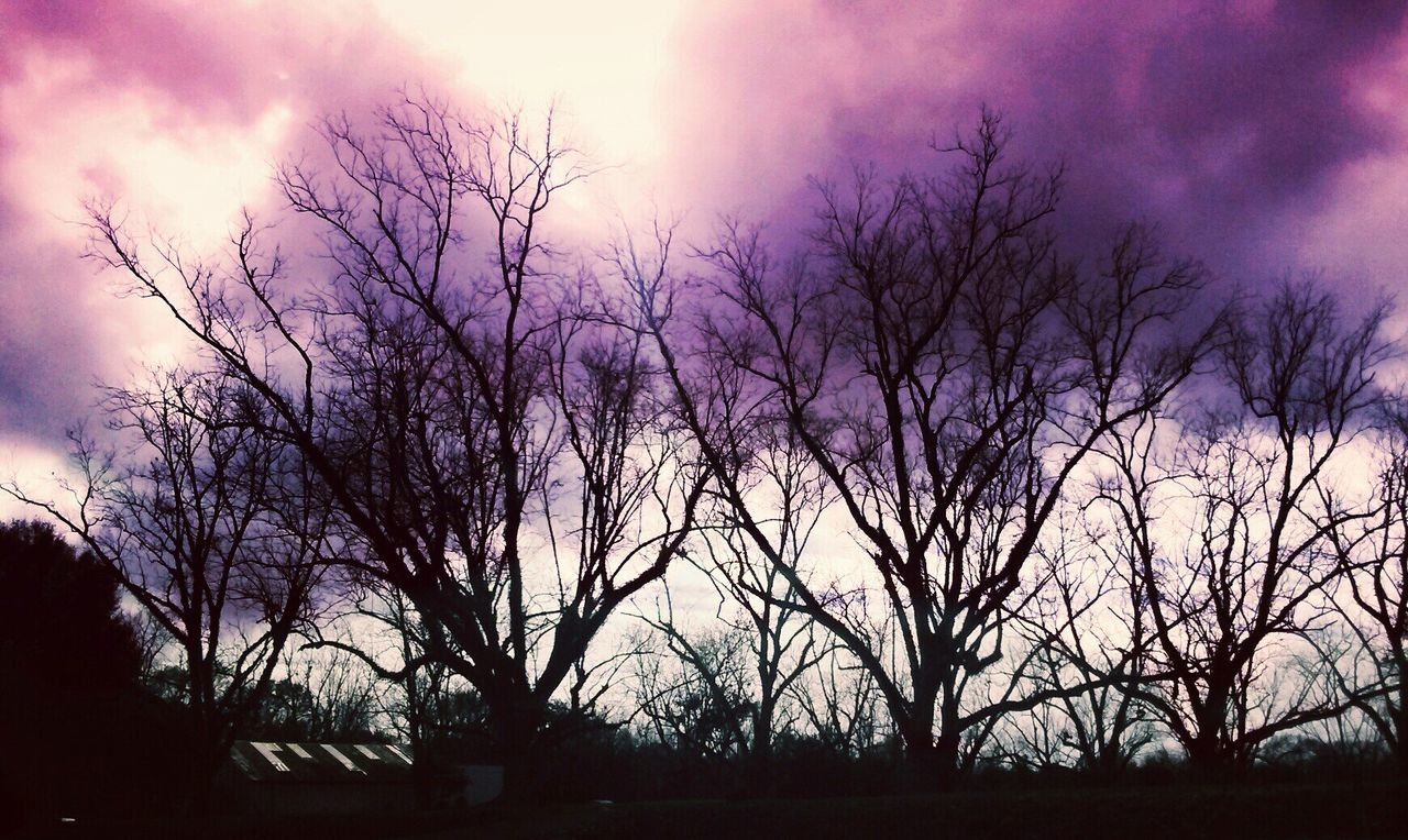 Sunset Silhouette Nature Sky No People Tree Outdoors Cloud - Sky Beauty In Nature Day Mobile AL Southern Peace Og Picturesque Tranquility Landscape WoodLand Scenics Silhouette Relaxation Nature Tree Dusk Bare Tree