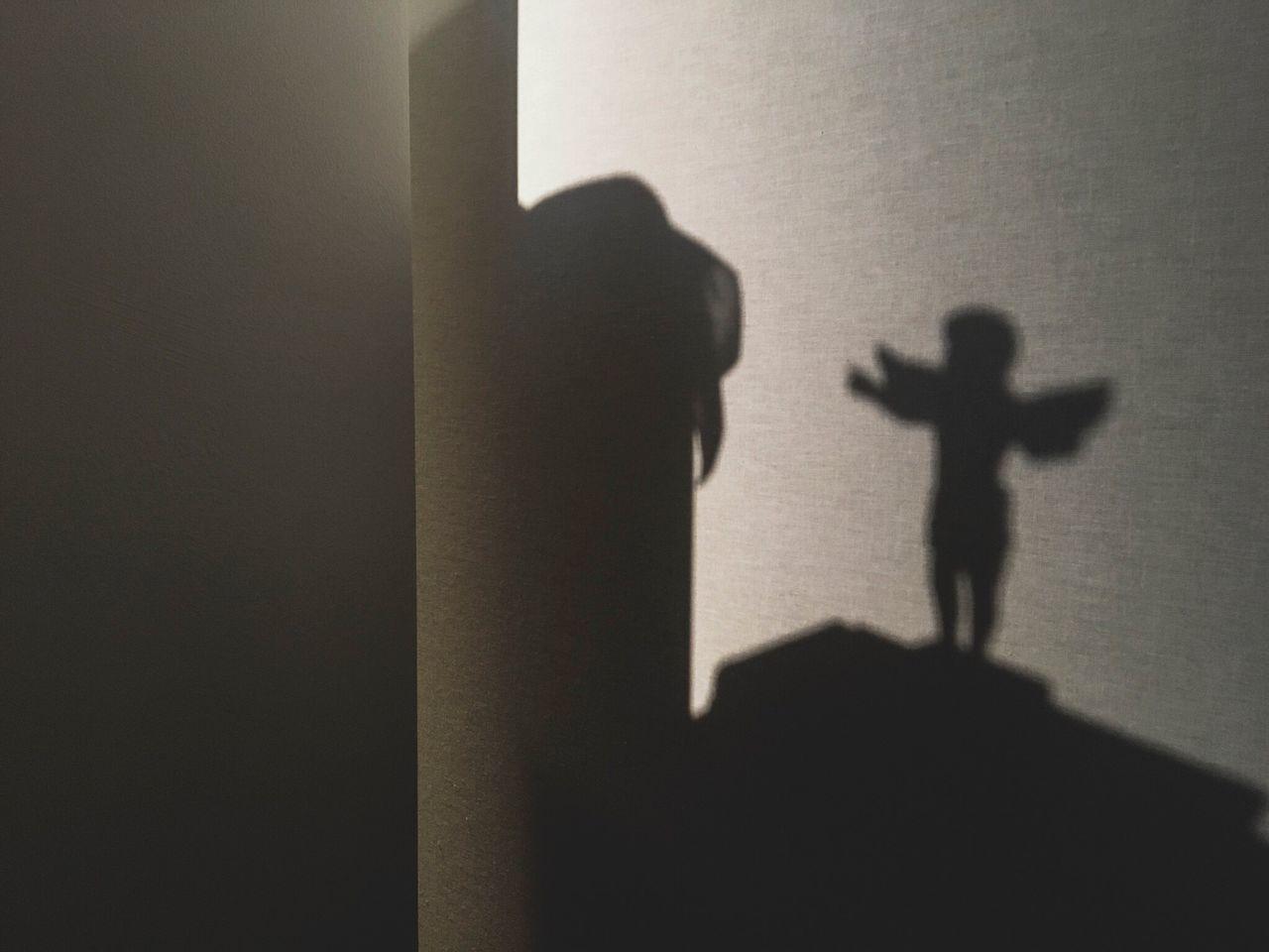 San Valentine's Day San Valentino February Colors Monochrome Angel Shadow In the Light for your Love Delacruzfotografia David De La Cruz