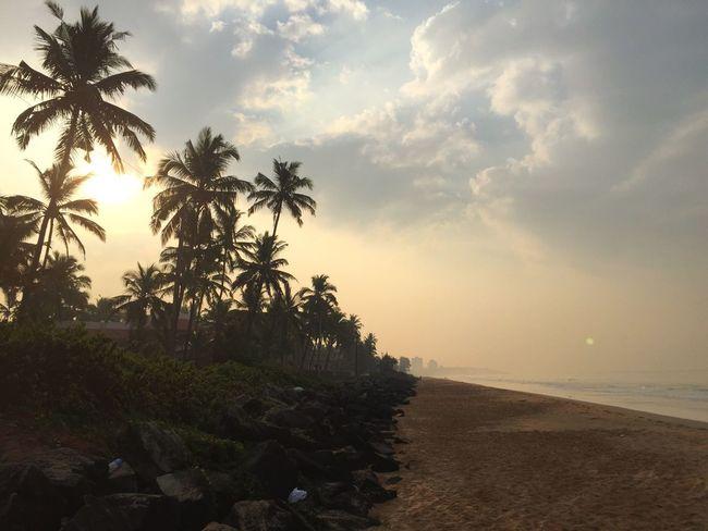 Foggy Morning Sunrise Beach Beachphotography