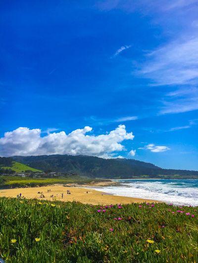 Monterey First Eyeem Photo