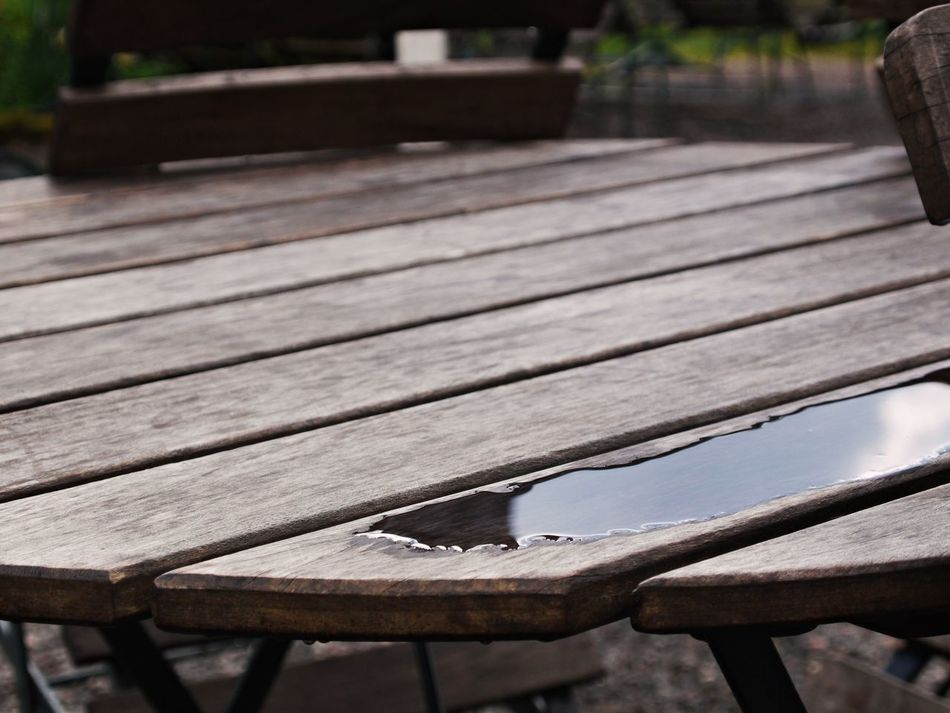 After Rain Close-up Day Focus On Foreground Nature No People Outdoors Table Tree Wood - Material Wood Paneling