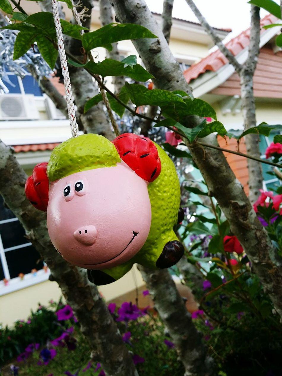 EyeEm Gallery EyeEm Eyeemthailand Eyeemgallery Happyday Nice Day EyeEm Nature Lover LoveNature Enjoymyday 😍😙😙😙😍😍😙😻😻😻